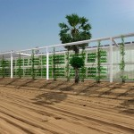 OAXIS: solar-powered hydroponic food belt proposed for the Arabian Peninsula