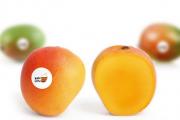 How one tweet inspired one man's mango selling website