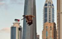 Dubai campaign to protect endangered eagles