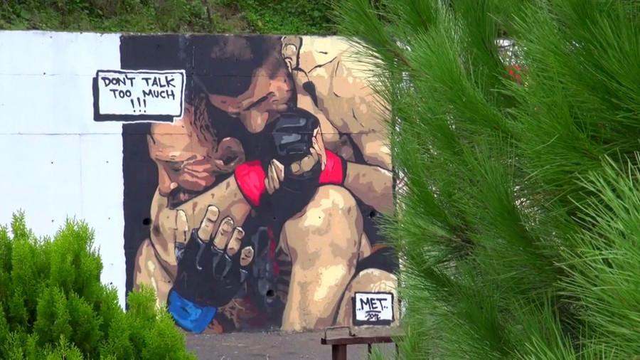 'He's a new Muhammad Ali for Muslims' – Turkish artist celebrates Khabib victory